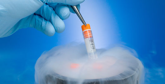 Frozen-Embryo-Transfer.png