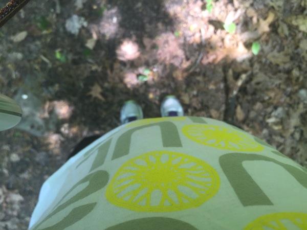 hiking in tenafly